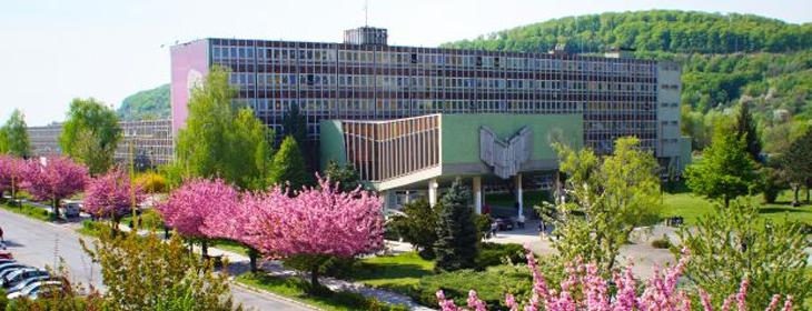 PhDr. Radovan Bačík, PhD. MBA.